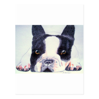French Bulldog Postcards
