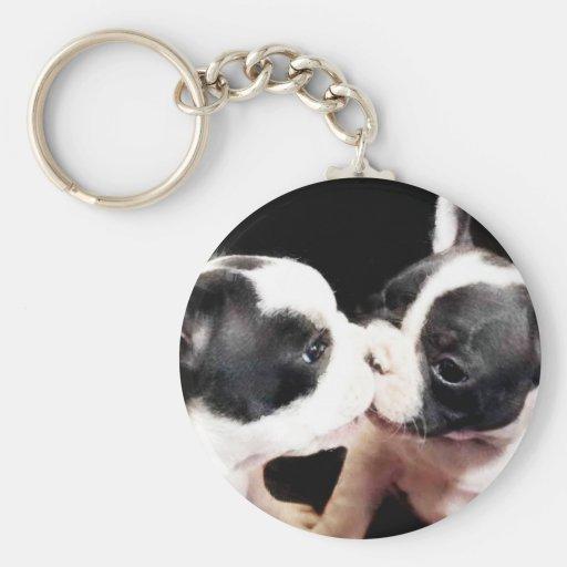 French bulldog puppies key chain