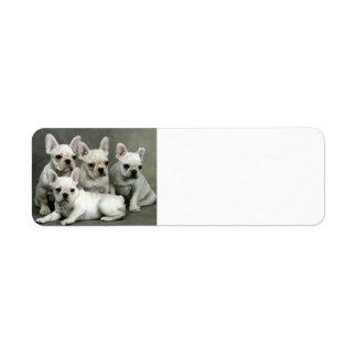 French Bulldog Puppies Label