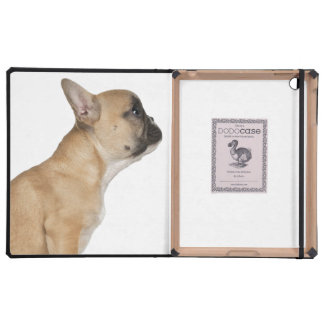 French Bulldog puppy (3,5 months old) iPad Cases
