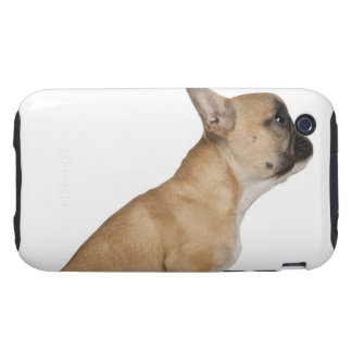 French Bulldog puppy (3,5 months old) iPhone 3 Tough Cover