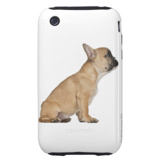 French Bulldog puppy (3,5 months old) Tough iPhone 3 Cover