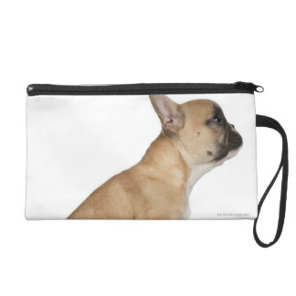 French Bulldog puppy (3,5 months old) Wristlet Purse