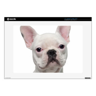 """French Bulldog Puppy (5 months old) Decals For 15"""" Laptops"""