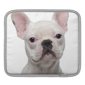 French Bulldog Puppy (5 months old) iPad Sleeve