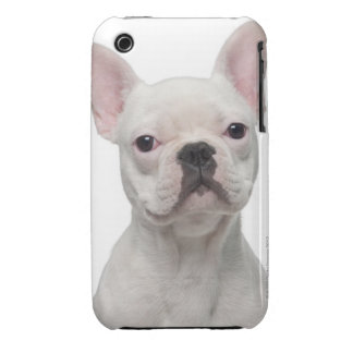 French Bulldog Puppy (5 months old) iPhone 3 Case-Mate Case