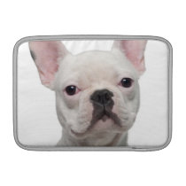 French Bulldog Puppy (5 months old) Sleeve For MacBook Air