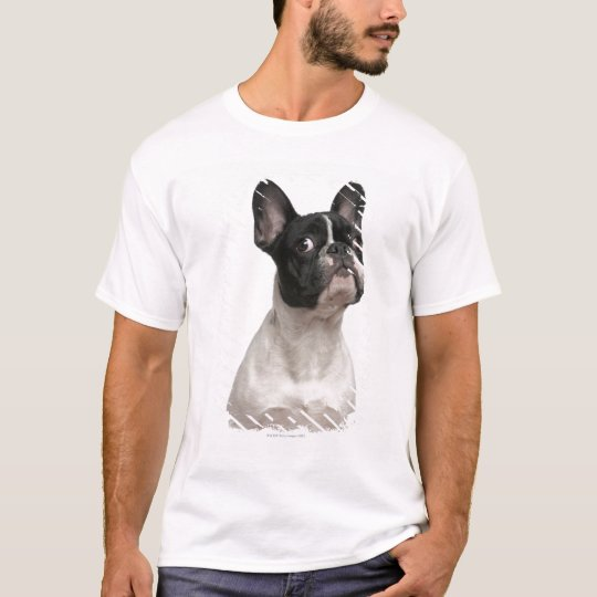 French Bulldog puppy (5 months old) T-Shirt