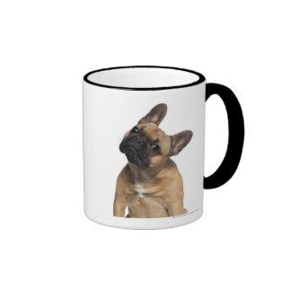 French Bulldog puppy (7 months old) Ringer Coffee Mug