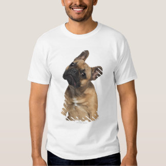 French Bulldog puppy (7 months old) T Shirts