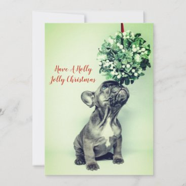 French Bulldog Puppy And Holly Holiday Card