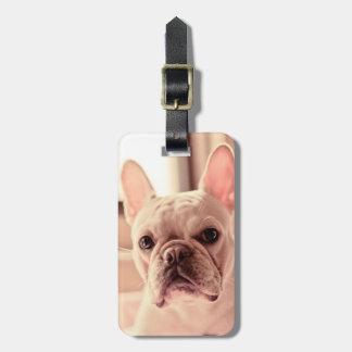 French Bulldog Puppy Bag Tag