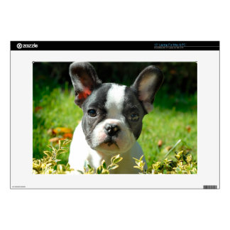 "French bulldog puppy behind the foliage 15"" laptop decal"