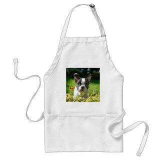 French bulldog puppy behind the foliage adult apron