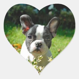 French bulldog puppy behind the foliage heart sticker