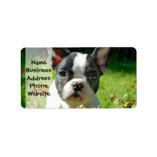 French bulldog puppy behind the foliage label