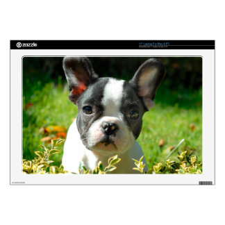 French bulldog puppy behind the foliage laptop skins