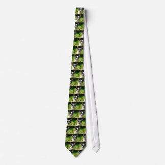 French bulldog puppy behind the foliage neck tie