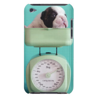 French bulldog puppy checking weight. barely there iPod case