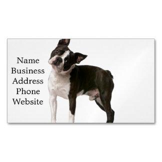 French bulldog - puppy dog - frenchie dog business card magnet
