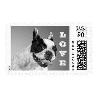 French Bulldog Puppy Dog - Gray & White Love Postage