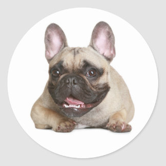 French Bulldog Puppy Dog Sticker / Seal Round Sticker
