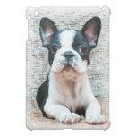 French Bulldog puppy ipad Speck Case iPad Mini Case