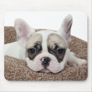 French Bulldog Puppy Lying In A Dog Bed Mouse Pad