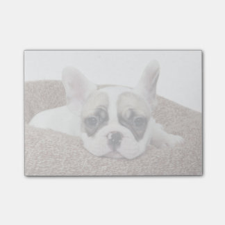 French Bulldog Puppy Lying In A Dog Bed Post-it Notes