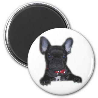 French Bulldog Puppy Refrigerator Magnet
