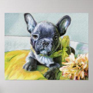 french bulldog puppy poster