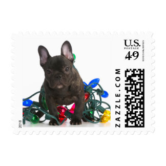 French Bulldog Puppy Tangled In Lights Postage