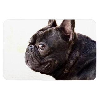 French Bulldog Rectangular Photo Magnet