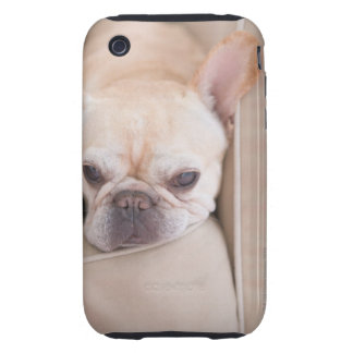 French bulldog resting on sofa iPhone 3 tough covers