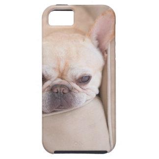 French bulldog resting on sofa iPhone SE/5/5s case