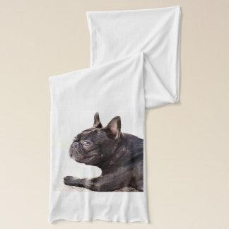 French bulldog scarf