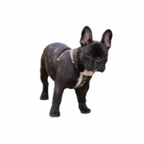 French Bulldog sculpture, gift idea Cutout