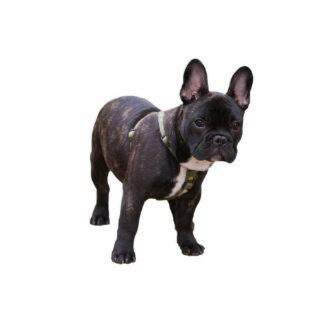 French Bulldog sculpture, gift idea Photo Cutout