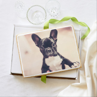 French bulldog shortbread cookie