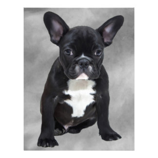 French Bulldog Sitting Watercolor Oil Painting Letterhead