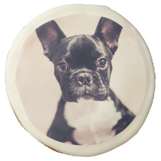 French bulldog sugar cookie