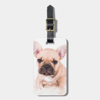 French bulldog. tag for bags