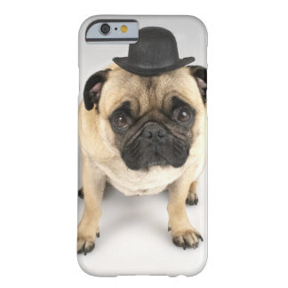 French bulldog wearing bowler, studio shot barely there iPhone 6 case