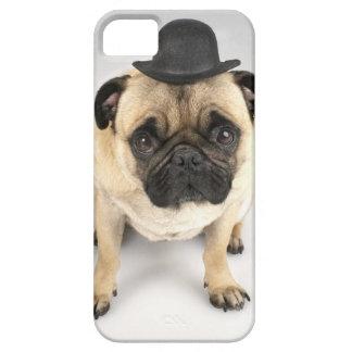 French bulldog wearing bowler, studio shot iPhone SE/5/5s case