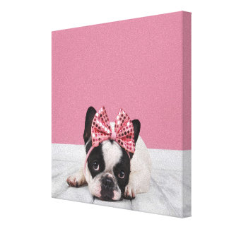 French Bulldog Wearing Pink Canvas Print