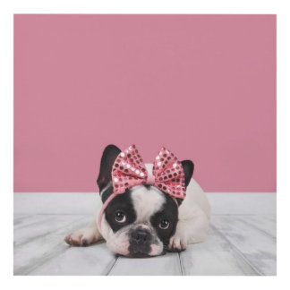 French Bulldog Wearing Pink Panel Wall Art