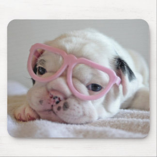 French bulldog white cub Glasses, lying on white Mouse Pad