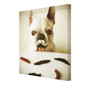 French Bulldog With A Mustache Canvas Print