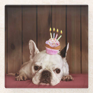French Bulldog With Birthday Cupcake Glass Coaster