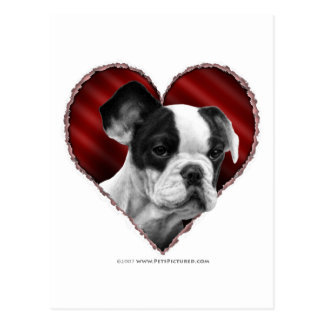 French Bulldog with Heart Postcard